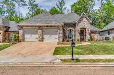 Brandon Single Family Home Contingent/Pending: 166 Provonce Park