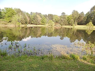 Madison Residential Lots & Land For Sale: 1205 Mannsdale Rd