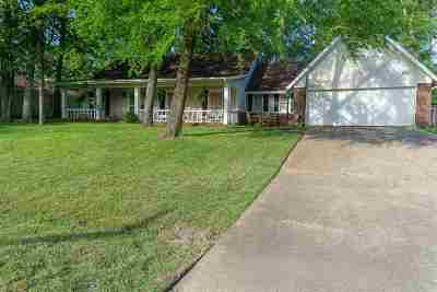 Brandon Single Family Home Contingent/Pending: 253 Bay Park Dr