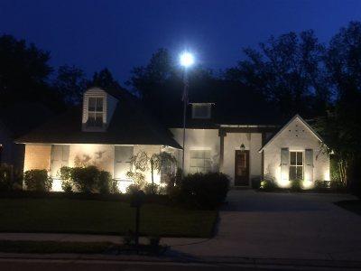 Brandon Single Family Home For Sale: 208 Penny Lane