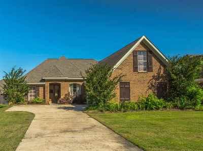 Single Family Home Contingent/Pending: 403 Copper Ridge Dr