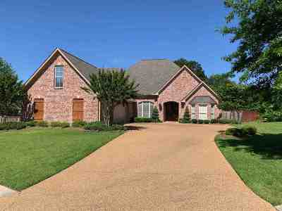 Canton Single Family Home For Sale: 162 Bear Creek Cir