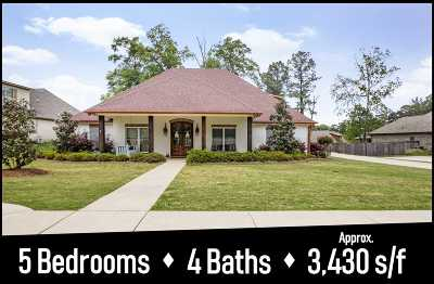 Rankin County Single Family Home For Sale: 216 Iron Horse Station