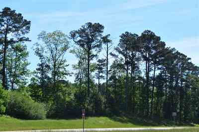 Residential Lots & Land For Sale: U S Highway 49 South