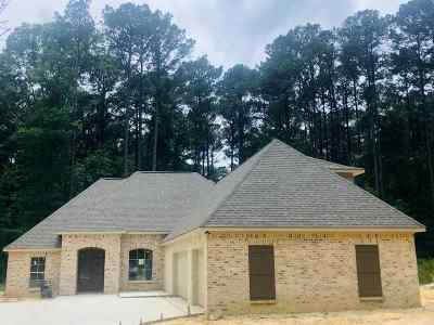 Rankin County Single Family Home For Sale: 140 Mt Helm Rd