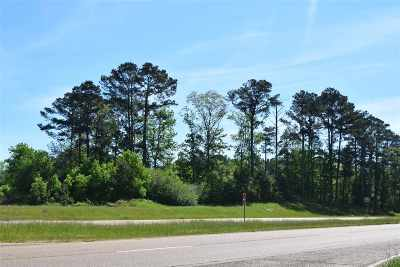 Residential Lots & Land For Sale: Highway 49