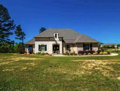 Rankin County Single Family Home For Sale: 245 Landmark Cv