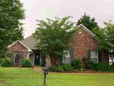 Pearl Single Family Home For Sale: 503 Wildberry Dr