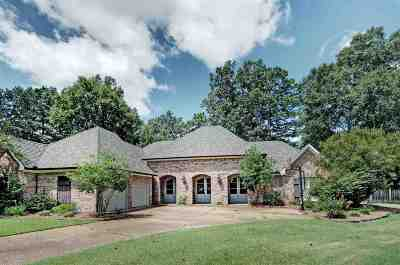 Canton Single Family Home For Sale: 802 Champion View Ct