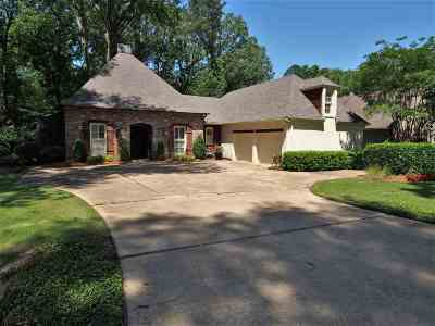 Jackson Single Family Home For Sale: 4259 Brussels Dr