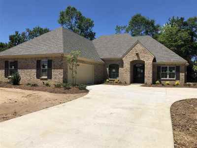 Hinds County Single Family Home For Sale: 227 Copper Creek Dr