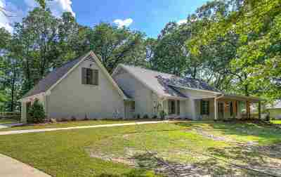 Rankin County Single Family Home For Sale: 111 Meadowview Dr