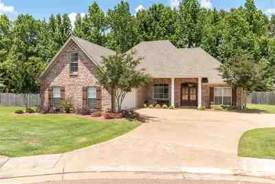 Hinds County Single Family Home Contingent/Pending: 168 Navajo Cir