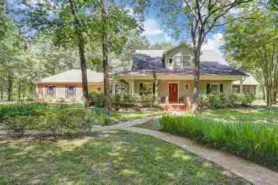 Brandon Single Family Home For Sale: 151 Goshen Springs Ln