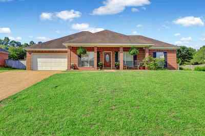 Brandon Single Family Home For Sale: 2043 S Cobblestone Cv