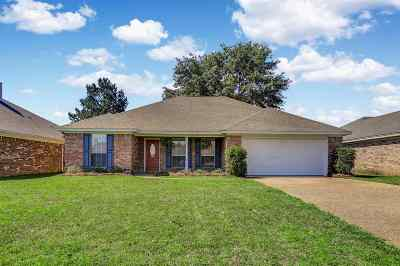 Brandon Single Family Home Contingent/Pending: 358 Briar View Dr