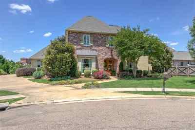 Madison County Single Family Home For Sale: 104 Novara Cv