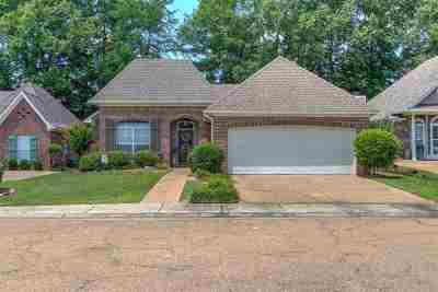 Brandon Single Family Home For Sale: 716 Stillwood Ct