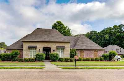 Hinds County Single Family Home For Sale: 122 Bentwood Dr