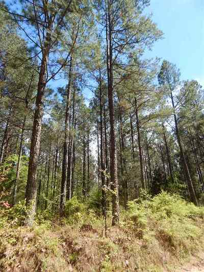 Residential Lots & Land For Sale: 001 County Rd 163