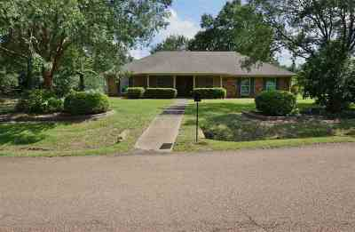 Pearl Single Family Home For Sale: 201 Arlington Dr
