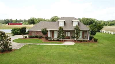 Hinds County Single Family Home For Sale: 1180 Cindy Dr