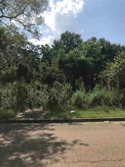 Jackson Residential Lots & Land For Sale: Holmes St