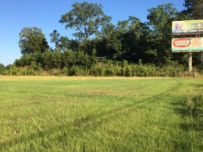 Rankin County Commercial For Sale: Hwy 49