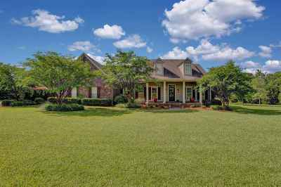 Madison Single Family Home Contingent/Pending: 118 Arrington Dr