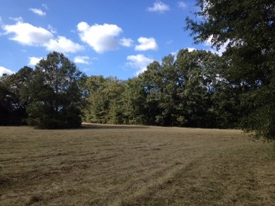 Hinds County Residential Lots & Land For Sale: Berry Rd