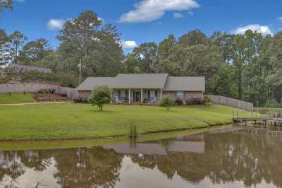 Hinds County Single Family Home For Sale: 1520 Davis Rd