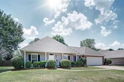 Rankin County Single Family Home For Sale: 342 Avalon Way