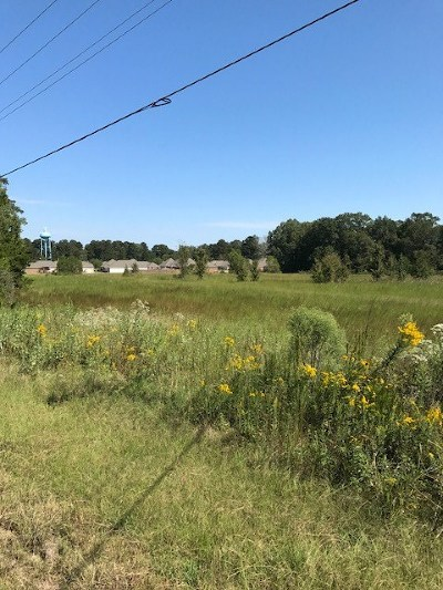 Brandon Residential Lots & Land For Sale: 4088 Hwy 471