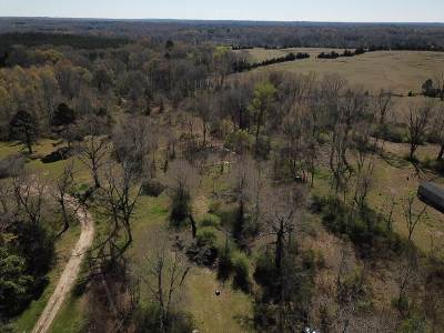 Hinds County Residential Lots & Land For Sale: 21659 Highway 18 Hwy