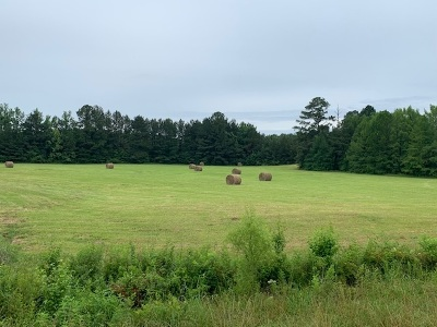Leake County Residential Lots & Land For Sale: S Hwy 43