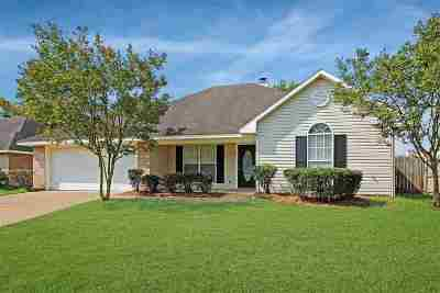 Byram Single Family Home For Sale: 921 Bullrun Dr