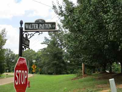 Ridgeland Residential Lots & Land For Sale: Walter Payton Ln