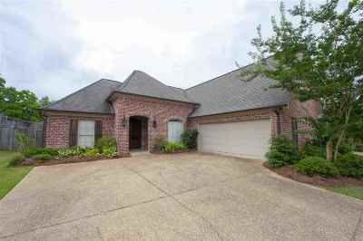 Rankin County Single Family Home For Sale: 544 Springhill Crossing