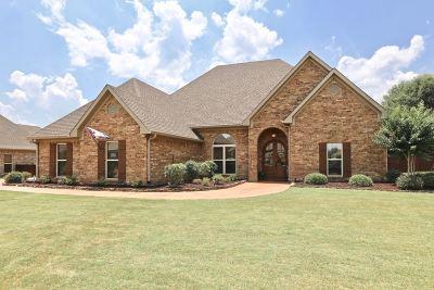 Brandon Single Family Home For Sale: 807 Osagian Cir.