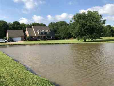 Brandon Single Family Home For Sale: 286 Fannin Landing Cir