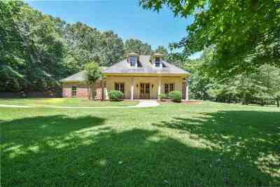 Hinds County Single Family Home For Sale: 10320 Old Port Gibson Rd