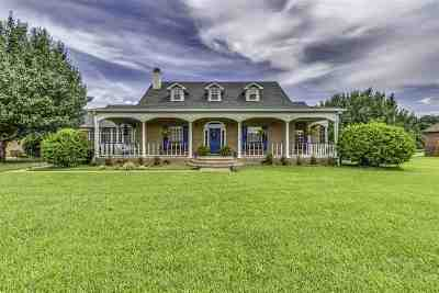 Madison Single Family Home For Sale: 126 Munich Dr
