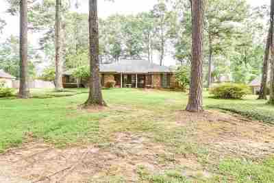 Brandon Single Family Home For Sale: 107 E Armistead Dr