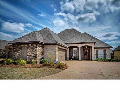 Rankin County Single Family Home For Sale: 308 Siltstone Ridge