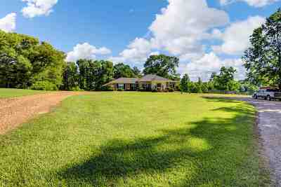 Hinds County Single Family Home For Sale: 2120 George Rd