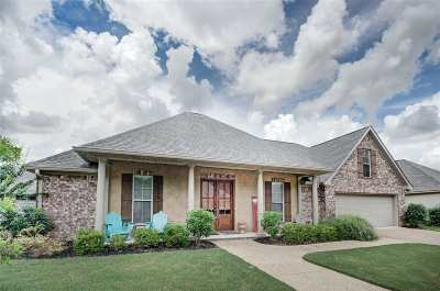 Brandon Single Family Home For Sale: 412 Glendale Pl