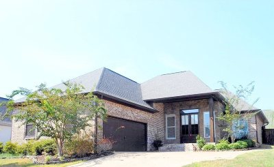 Brandon Single Family Home For Sale: 127 Amethyst Dr