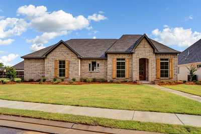 Flowood Single Family Home For Sale: 167 Grace Dr