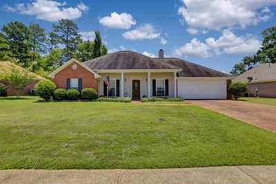Brandon Single Family Home For Sale: 304 Afton Dr