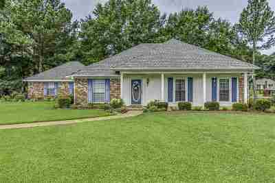 Ridgeland Single Family Home For Sale: 206 Sagewood Cv